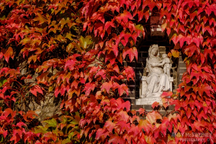 A madonna on a corner in late fall/autumn in Brugge, Belgium.