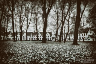 The Beguinage in fall with trees and alsmhouses in Brugge, Belgium