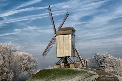 The windmill on the snowy hill with trees covered in frost during winter in Brugge, Belgium
